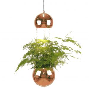 PLANTER Copper šviestuvas