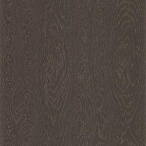 Tapetai Foundation, Wood Grain 92 5025
