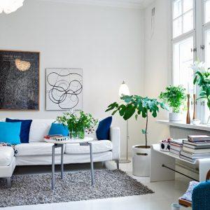 living-room-plants-665x498