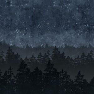Tapetai Engblad & Co, nordick night, 8845