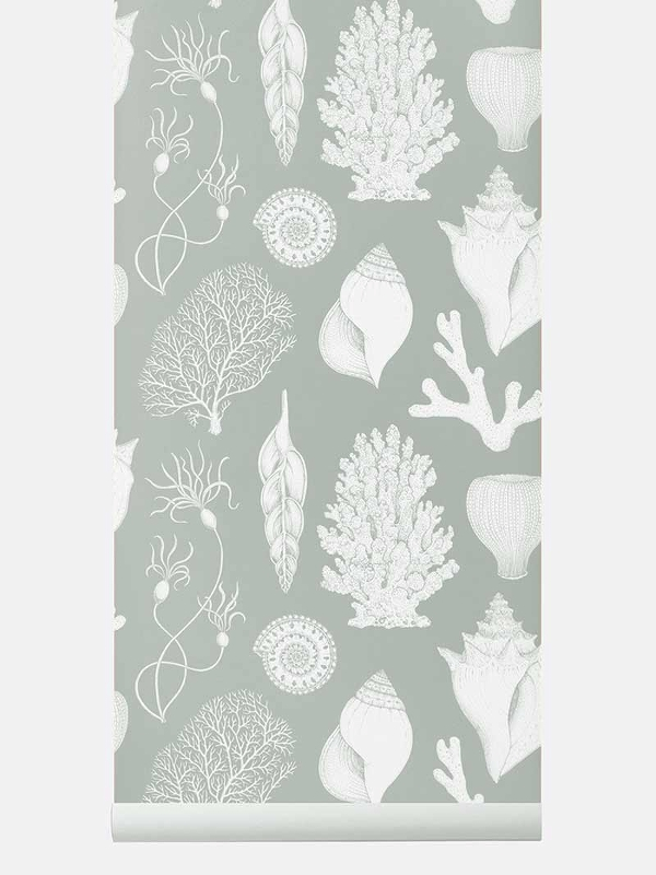 tapetai fermliving, Katie Scott Wallpaper, Shells, Aqua