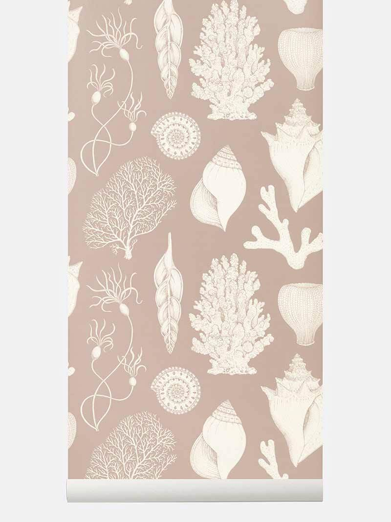 tapetai fermliving, Katie Scott Wallpaper, Shells, Rose